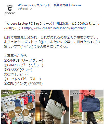 cheero Laptop Bag_5